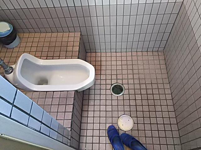 トイレ解体前